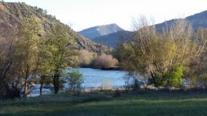 Water Front Properties in and around Durango